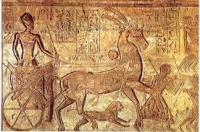 Vortrag & Essen: Ramses der Große