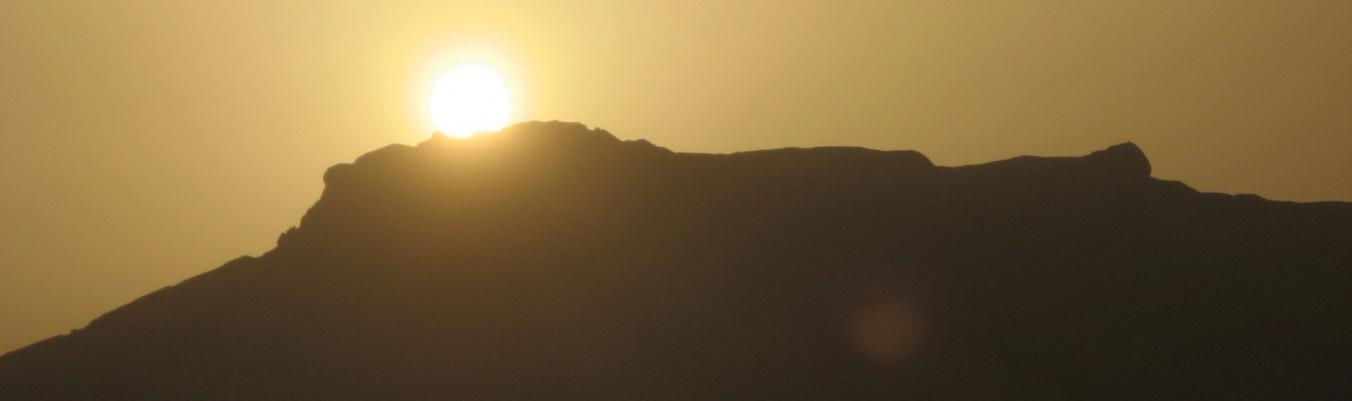 Dattelhain und Wüstenfelsen